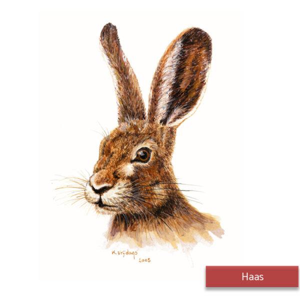 Kateleen Vrijdags Wildlife artist schilderij Haas2