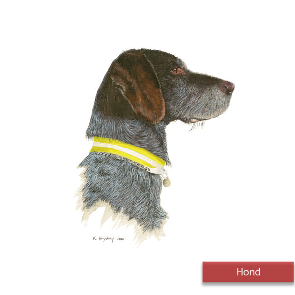 Kateleen Vrijdags Wildlife artist schilderij Hond2