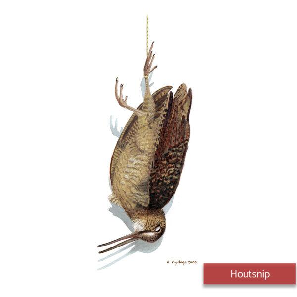 Kateleen Vrijdags Wildlife artist schilderij Houtsnip