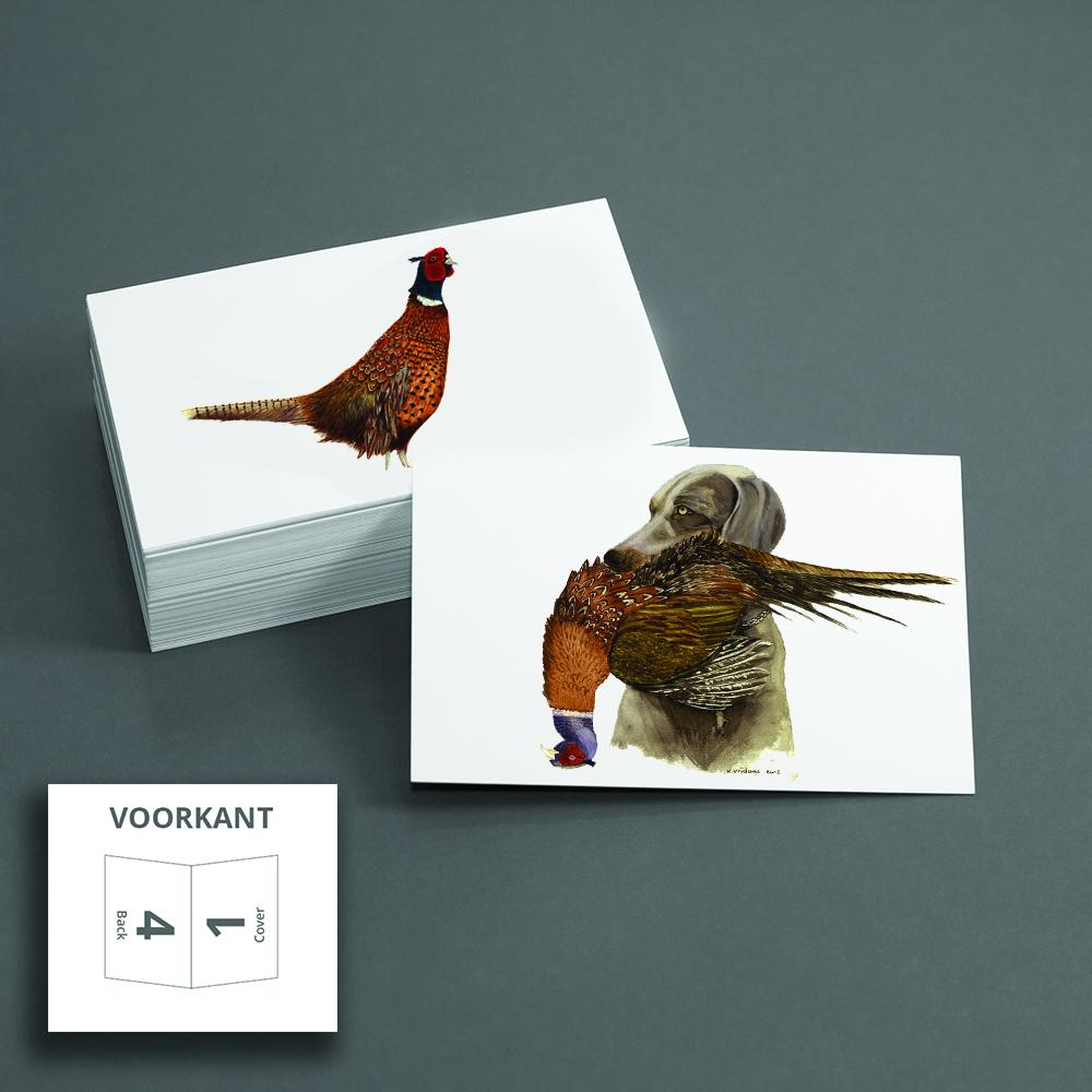 Kateleen Vrijdags wildlife artist _postkaarten